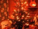 Firmenweihnachtsfeier -All inclusive 49,50 € pro Person-