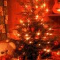 Firmenweihnachtsfeier -All inclusive 49,50 € pro Person-